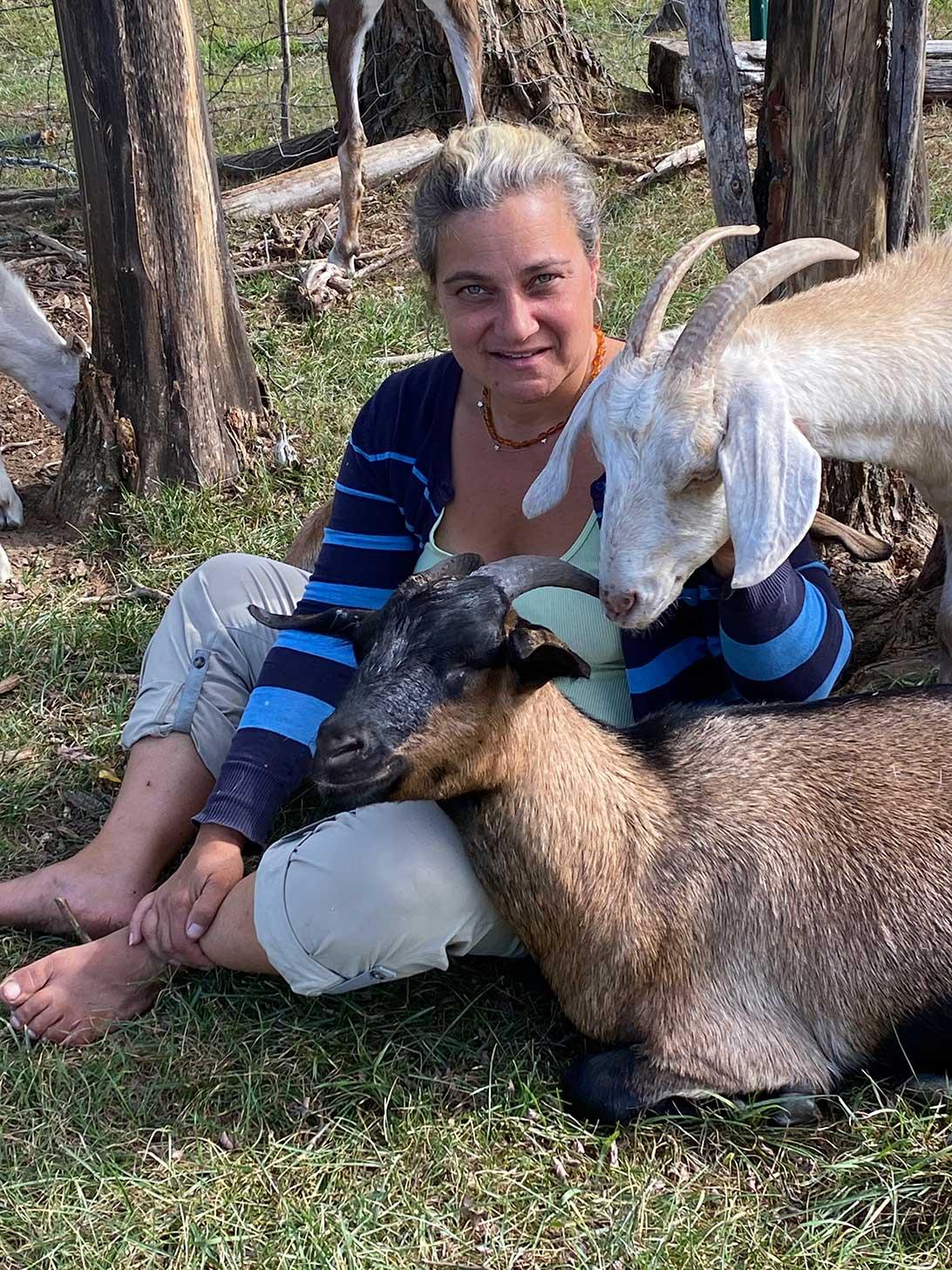 spice of life farm nubian goats