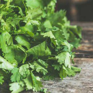 Chimichurri recipe from Spice of Life Farm
